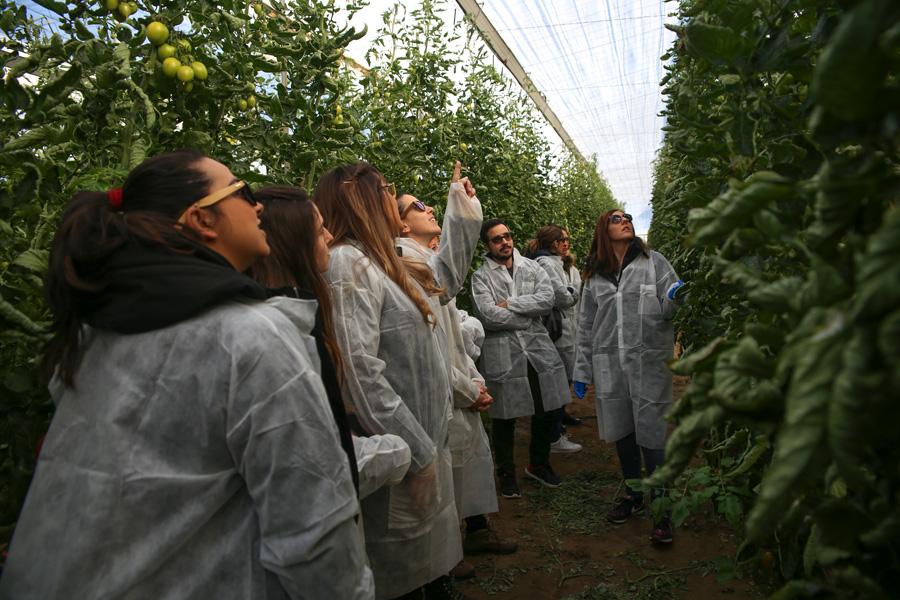 Greenhouse Training