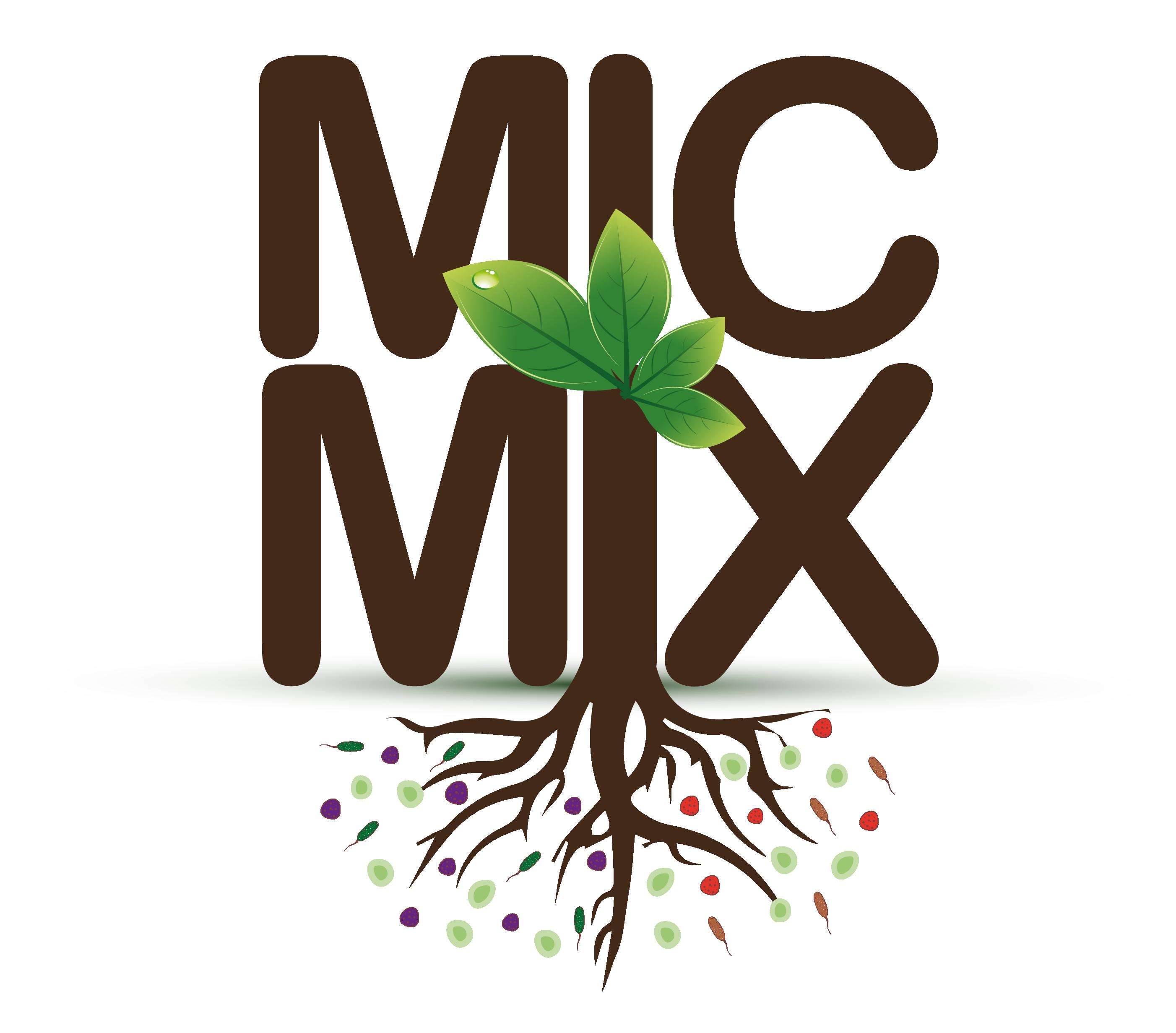 MIC MIX